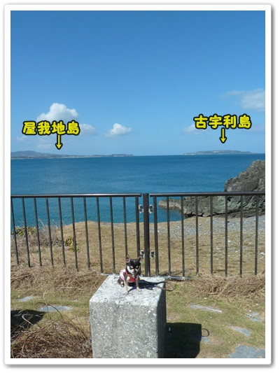 20121027-11.jpg