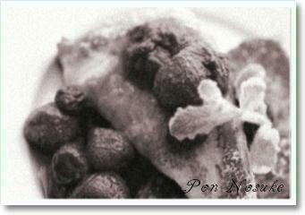b白黒フレンチトースト
