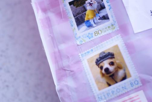 bミミちゃん切手