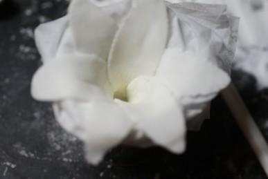 b花の形を整える