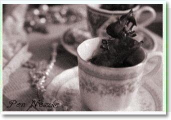 b白黒コーヒーゼリー