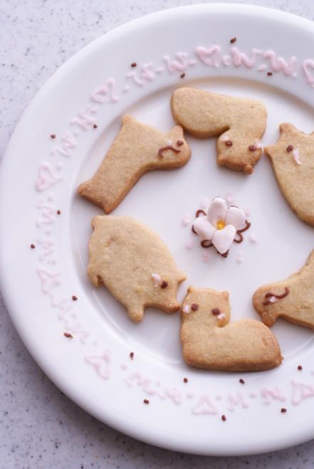 b縦動物クッキー