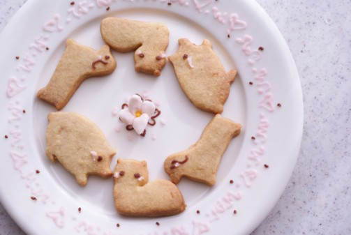 b横動物クッキー
