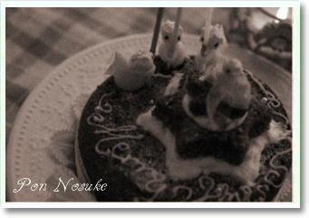 b白黒ミックス粉クリスマスケーキ