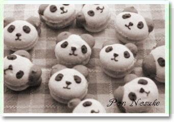 b白黒パンダ