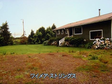 DSC01270.jpg