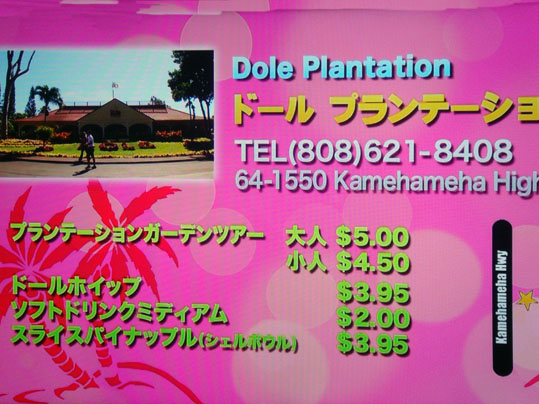 DSC05631_20111114083334.jpg