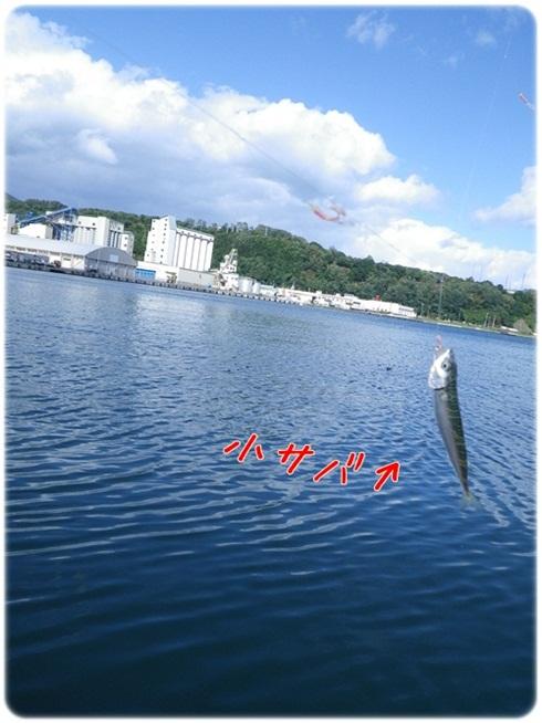 020_20111006202624.jpg