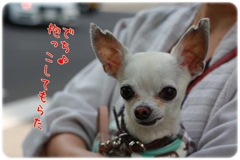 104_20111004214255.jpg