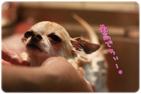 112_20111109195038.jpg