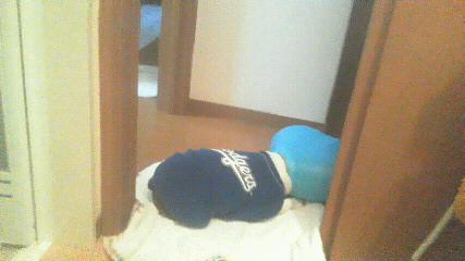 仕事行く用意をしてると洗面所の前でスト-カ-中。