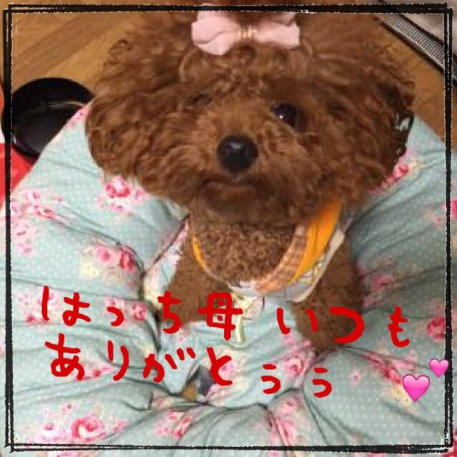 20141019203343c8d.jpg
