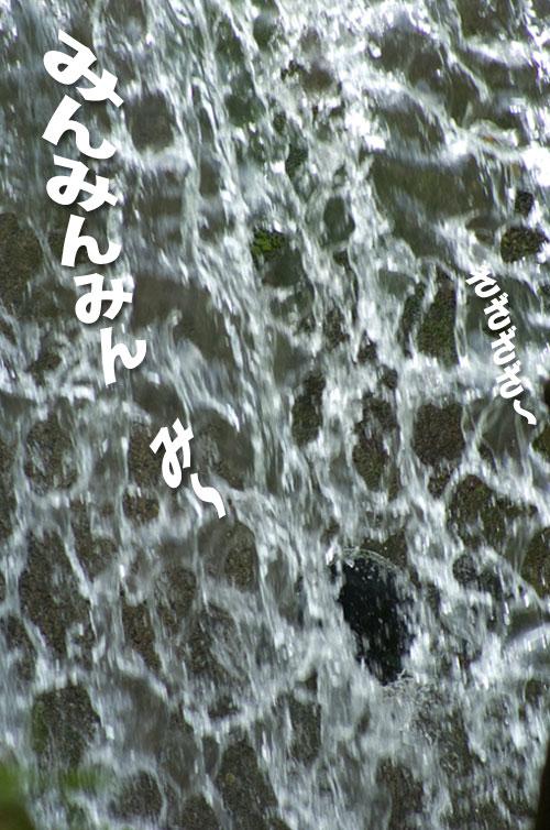 100808_17.jpg