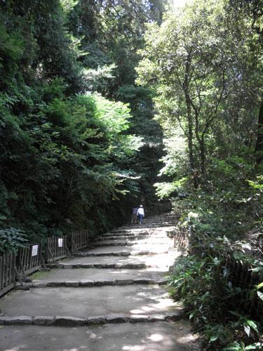彦根城階段