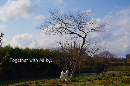 Together with Milky.