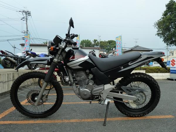 SL6(450.jpg