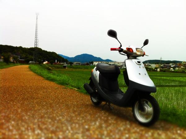 mususukuAir5.jpg