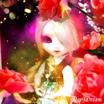 IMG_2247.jpg