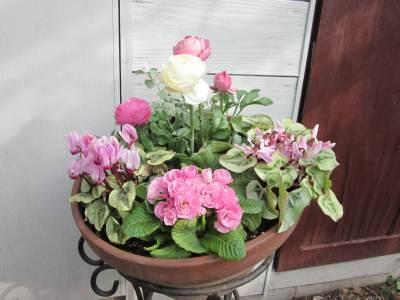 春の寄せ植え3