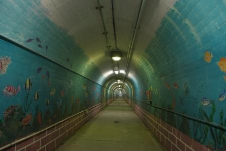 トンネル水族館