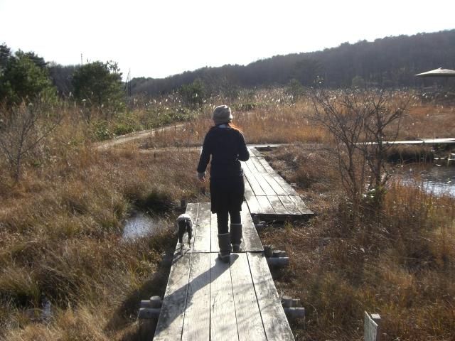 2010.11レジーナの森 236