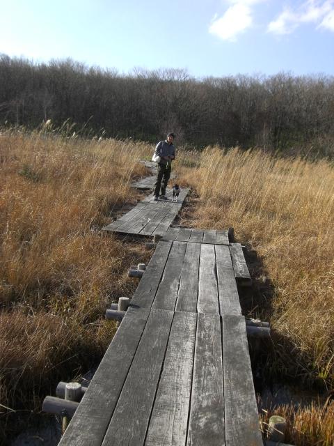 2010.11レジーナの森 252