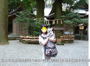 ブログ用P1030885-20140917-161312