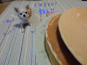 ホットケーキ欲しい