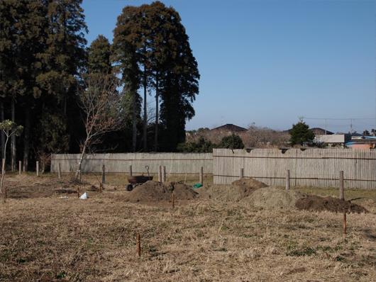 竹根切り2_26