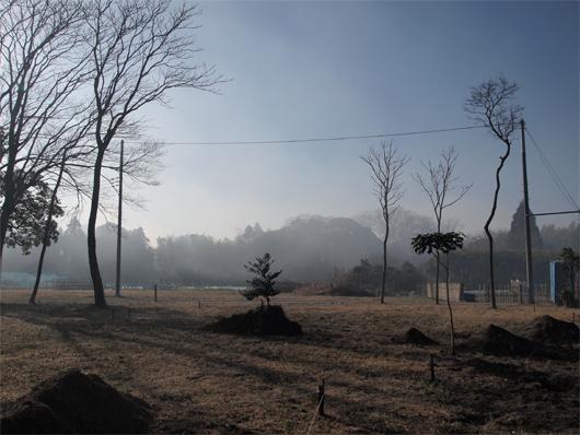 竹根切り2_23