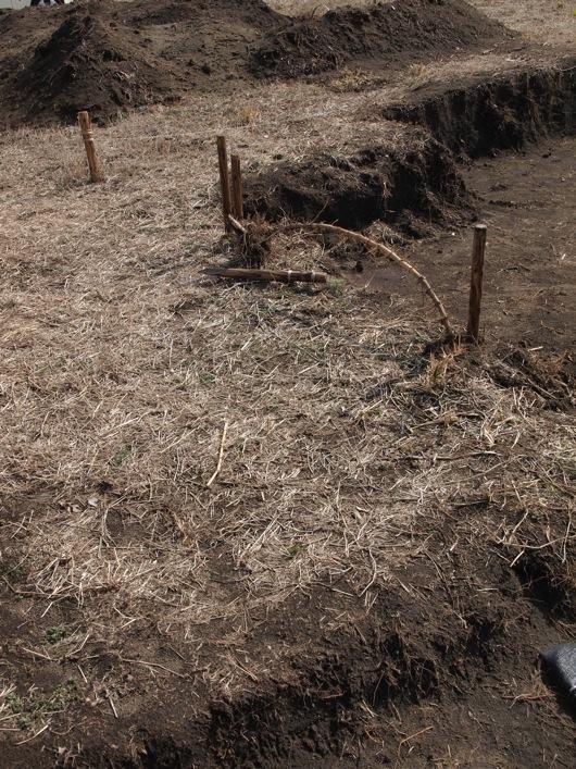 竹の根切り6_2_1