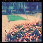 instagram 021