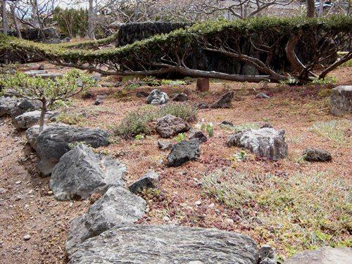 4月の庭(2)