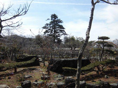 4月の庭(1)