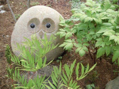 庭のフクロウ