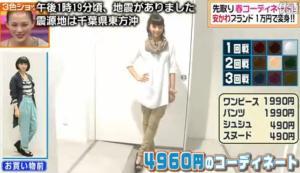 安田美沙子、テーマ「濃淡ファッション」