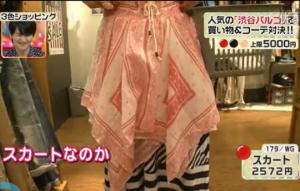 179/WG、スカート