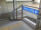 TS3B1317.jpg