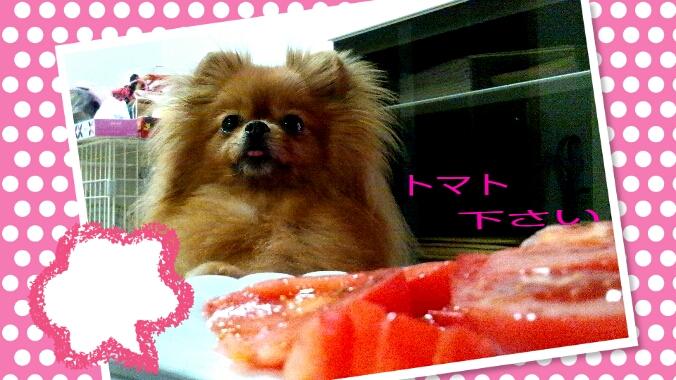 PhotoHenshu_20120503234518.jpg