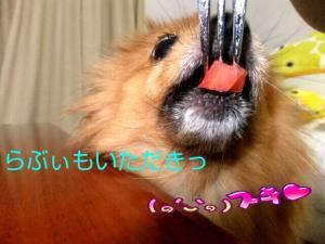 PhotoHenshu_20120504164222.jpg
