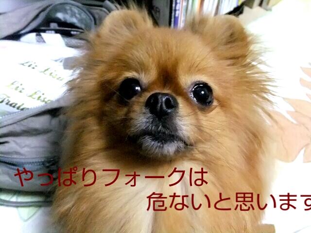 PhotoHenshu_20120504165820.jpg