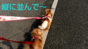 PhotoHenshu_20120506134846.jpg