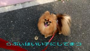 PhotoHenshu_20120506135427.jpg