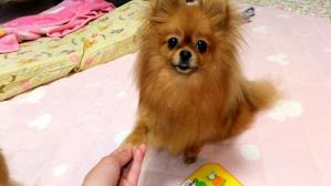PhotoHenshu_20120509194007.jpg