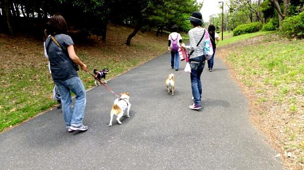 PhotoHenshu_20120517194813.jpg
