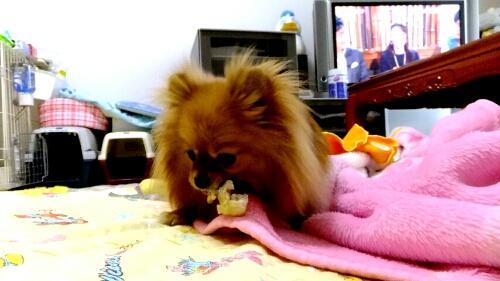 PhotoHenshu_20120528200358.jpg