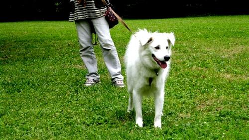 PhotoHenshu_20120606134752.jpg
