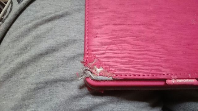 iPadの噛み傷