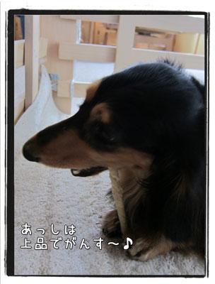 2010063005.jpg