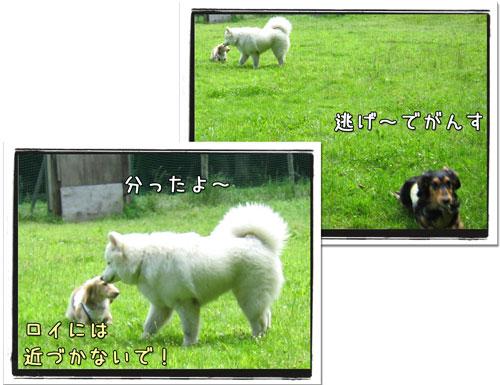 2010081207.jpg